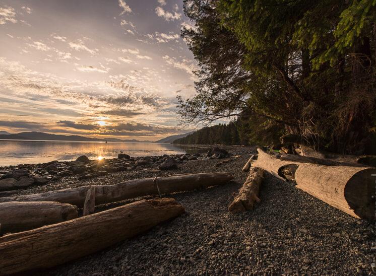 Sonnenaufgang im Orca Camp