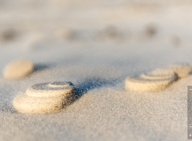 Kunstwerke im Sand