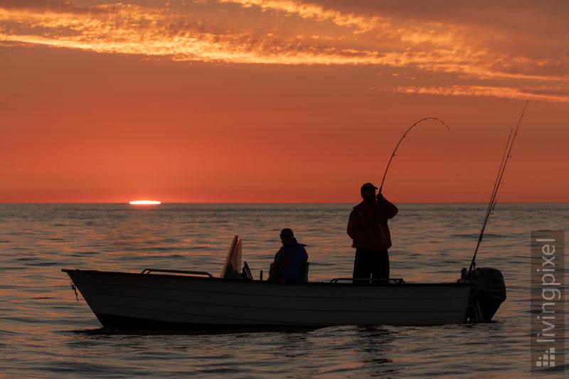 Angeln in der Mitternachtssonne, Fisch!