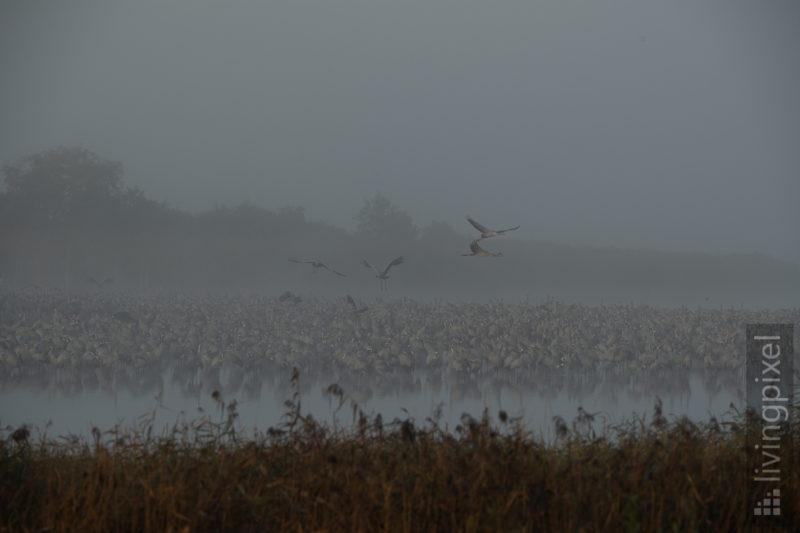 Start im Nebel