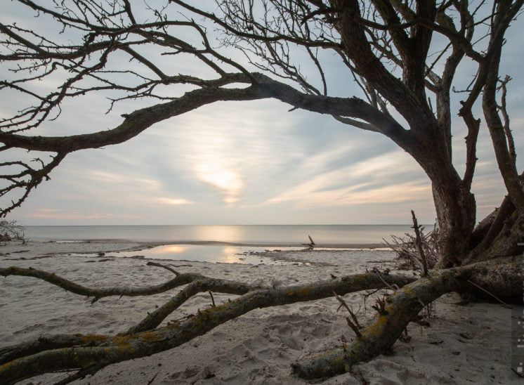 Prerow Weststrand
