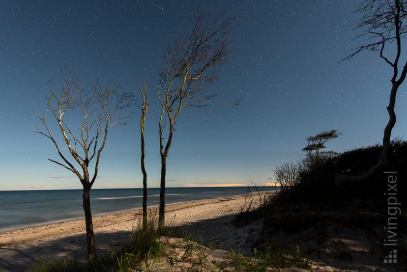 Strand im Mondschein