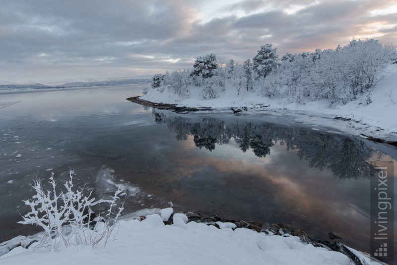Reflektion im Fjord