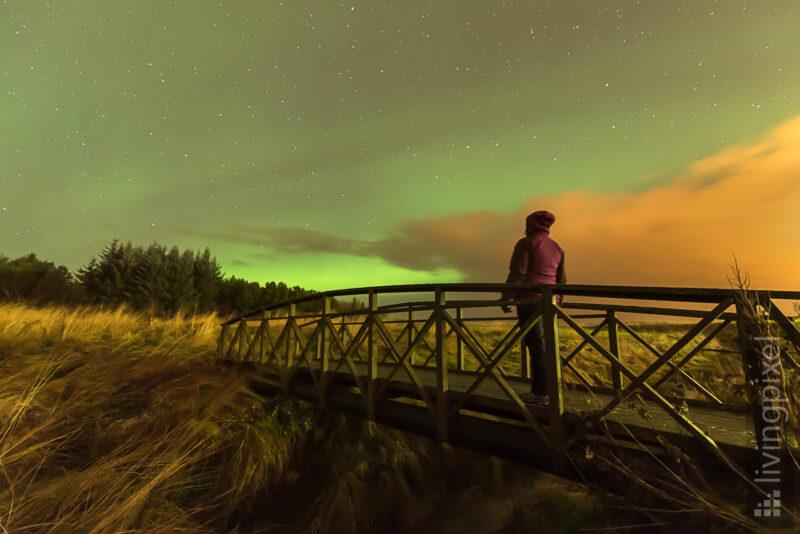 Auf dem Weg ins grüne Licht