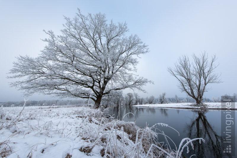 Spree im Winter