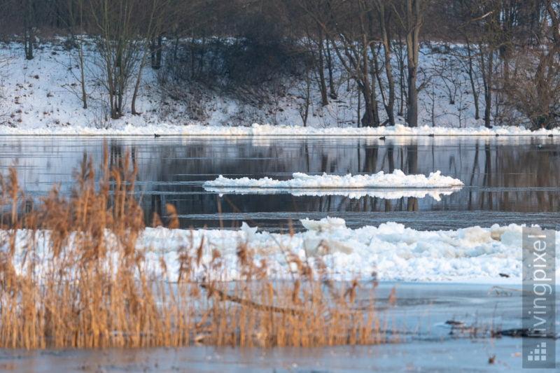 Eis auf der Oder