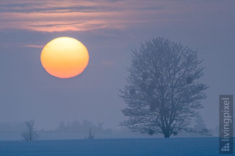 Sonnenuntergang im eisigen Nebel
